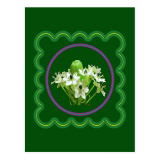Elegant white flower floral  graphic on 100 gifts postcard