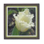 "Elegant White Frayed Tulip Medium (3""x3"") Box"