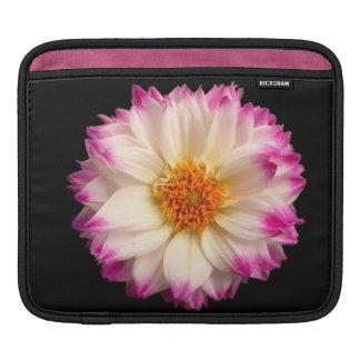Elegant White Pink Lotus Flower Black iPad Sleeve