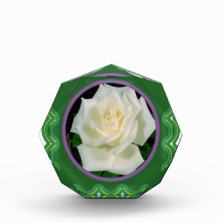 Elegant white rose flower floral graphic 100 gifts