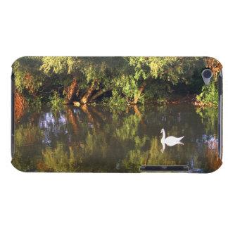 Elegant  White Swan on Lake - Nature Photography iPod Touch Case