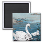 Elegant White Swan With Baby 2 Inch Square Magnet