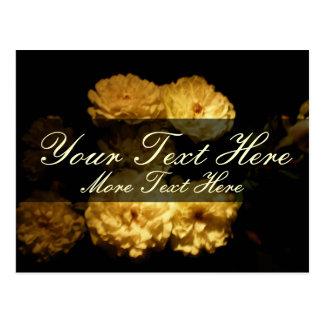 "Elegant White Tea Roses ""Save the Date"" Postcard"