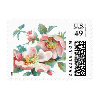 Elegant wild rose postage