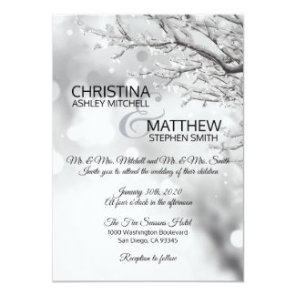 Elegant Winter Wonderland Snow Snowflakes WEDDING Invitation