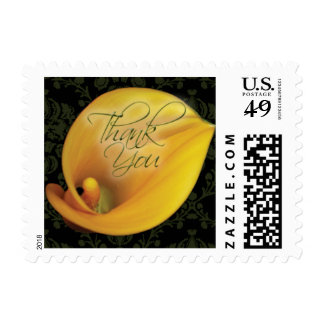 Elegant Yellow Calla Lily Thank You Small Postage