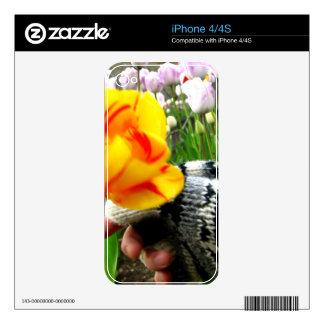 Elegido iPhone 4 Skins