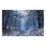 Elegy (Winter/Day) Premium Unwrapped Canvas Posters