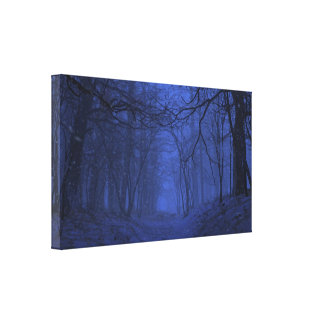 Elegy (Winter/Night) Canvas Canvas Print