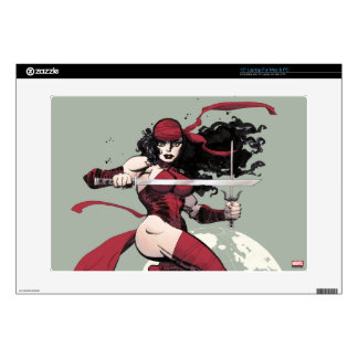 Elektra Traveling The World Decals For Laptops