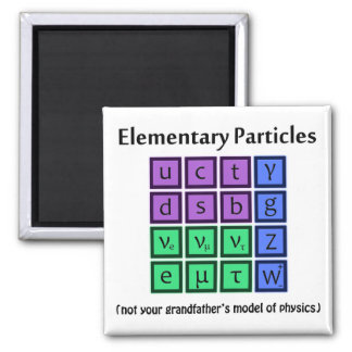 Elementary Particle Physics Magnet
