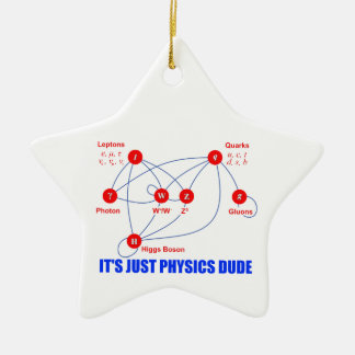 Elementary Particles of Physics Higgs Boson Quarks Ceramic Ornament