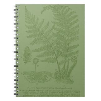 Elementos de la botánica: Helecho Libretas