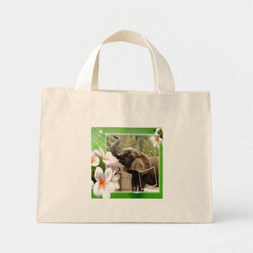 elephant-00014-85x85 bolsa