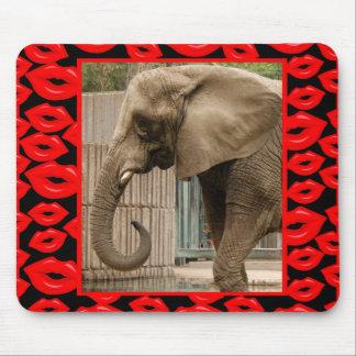 elephant-00029-85x85 alfombrillas de ratón