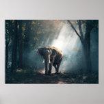 elephant-1822636 poster