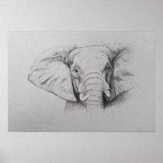Elephant 2011 poster