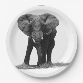 ELEPHANT 2 PAPER PLATE