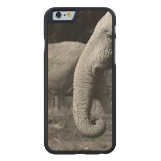 elephant-34 carved® maple iPhone 6 slim case