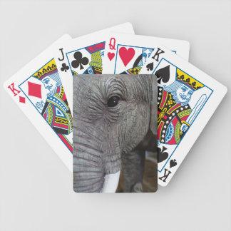 elephant-543256 Grey elephant photography close-up Bicycle Playing Cards