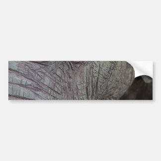 elephant-543256 Grey elephant photography close-up Bumper Sticker