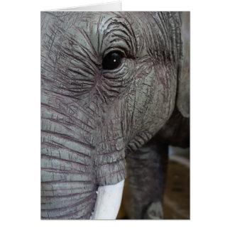 elephant-543256 Grey elephant photography close-up Card