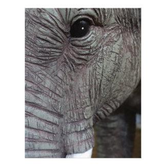 elephant-543256 Grey elephant photography close-up Letterhead