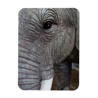 elephant-543256 Grey elephant photography close-up Magnet