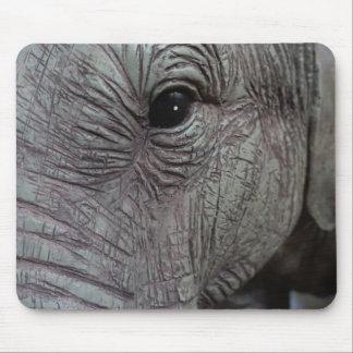 elephant-543256 Grey elephant photography close-up Mouse Pad