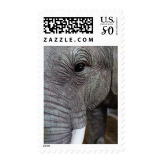elephant-543256 Grey elephant photography close-up Postage