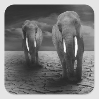 elephant-5900 square sticker