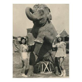 elephant and 2 girls circus postcard