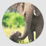 Elephant and Baby Classic Round Sticker