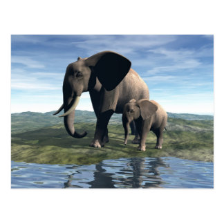 Elephant and Baby Postcards