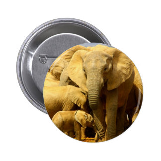 elephant and calf buttons