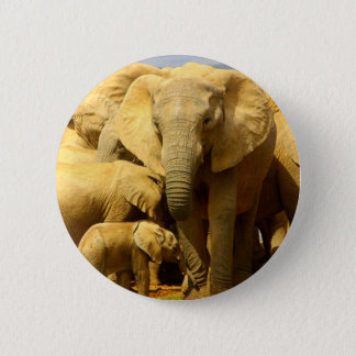 elephant and calf button