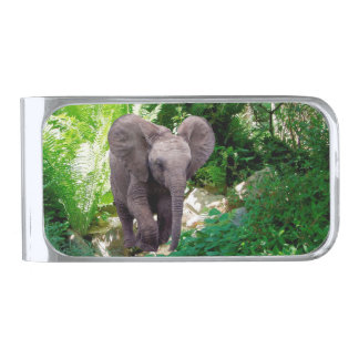 Elephant and Jungle Silver Finish Money Clip