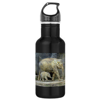 Elephant and Newborn Baby Water Bottle