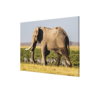Elephant and Zebras at Waterhole Canvas Print