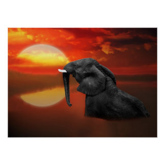Elephant at the lake poster