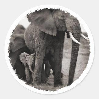 Elephant & Baby Elephant Sticker