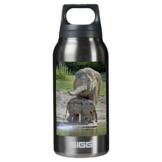 Elephant Baby Gets Shower Insulated Water Bottle