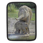 Elephant Baby Gets Shower Sleeves For iPads