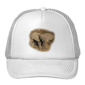Elephant baby safari hats peak caps