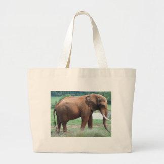 elephant bags