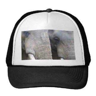 Elephant Baseball Cap Mesh Hats