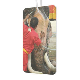 Elephant Bathtime ... Ayutthaya, Thailand Air Freshener