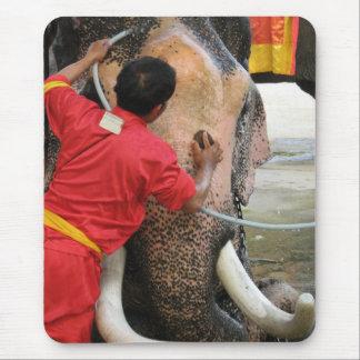 Elephant Bathtime ... Ayutthaya, Thailand Mouse Pad