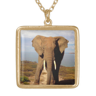 Elephant Beach Day Outing, Gold Plated Necklace