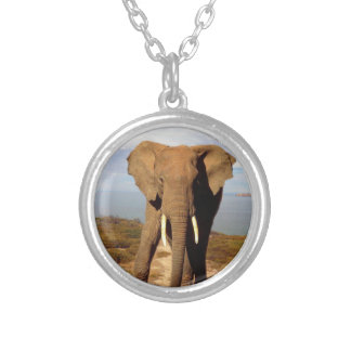Elephant Beach Day Outing, Silver Plated Necklace